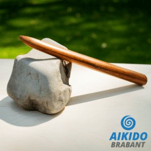 Aikido Tanto – Made in Taiwan